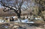 Эчмиадзин. Кладбище у храма Св. Гаяне