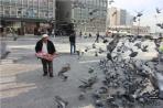Анкара. На площади Ататюрка