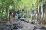 Шанхай. В Саду радости