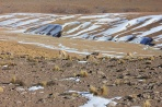 Пейзаж в Андах с викуньями