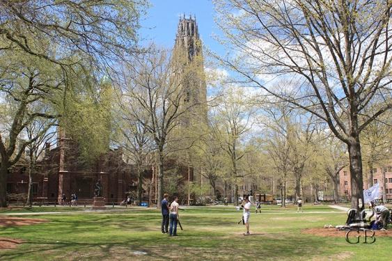 Нью-Хейвен. Двор Йельского университета (СТ)