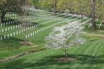 Арлингтон. Мемориальное кладбище (VA) - By: admin